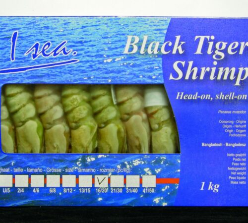 Black Tiger Shrimp ZB Centrale